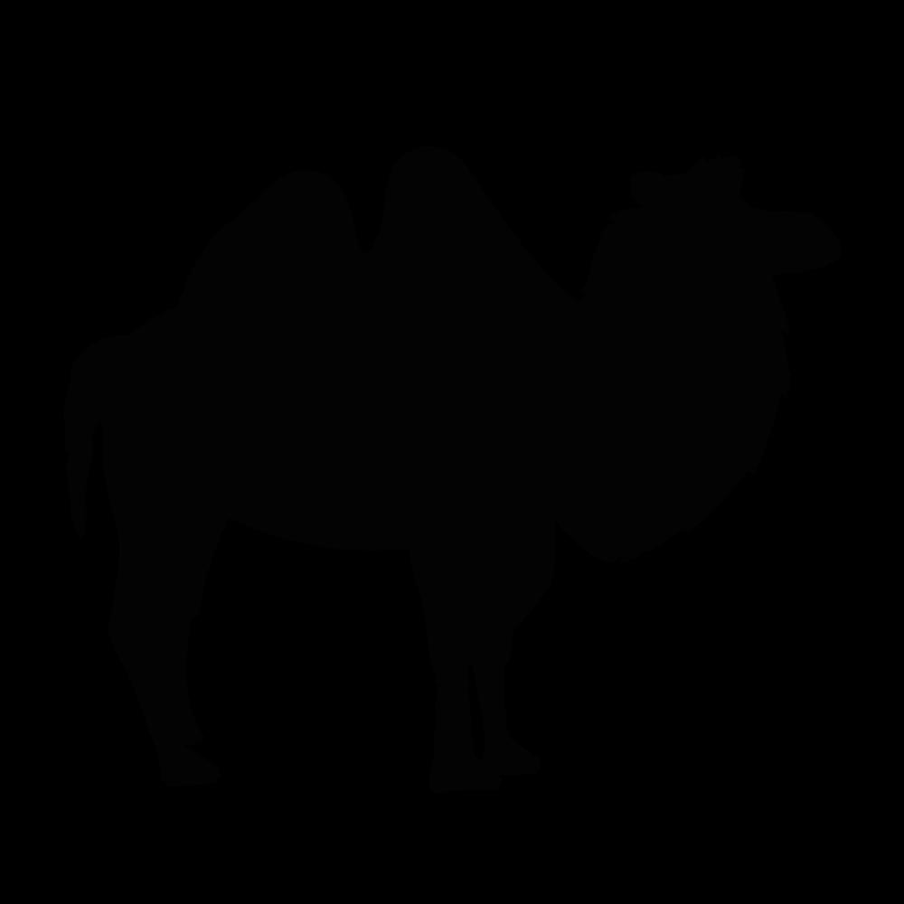 #TAGLIATORE#camel♡#new in