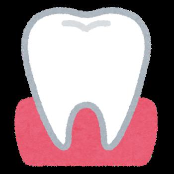 【staff blog】食事は、歯が命♡