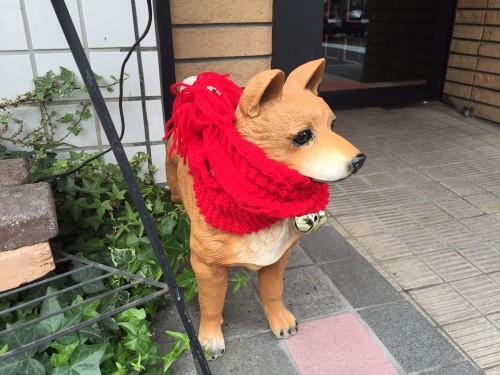 京都の人って恐い・・・( ? _ ? )